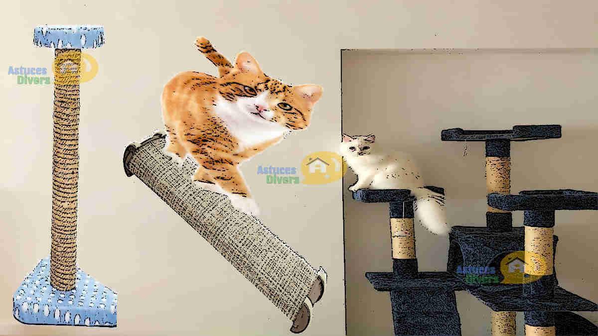 Griffoir Chat Fait Maison fabriquer un griffoir pour chat avec planche en 25 minutes